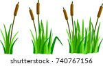 A Set Of Reeds In Grass...