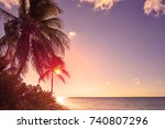 Stock photo holbox island sunset beach palm tree tropical in mexico 740807296