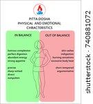ayurveda doshas. ayurvedic body ... | Shutterstock .eps vector #740881072