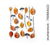autumn composition. branches ... | Shutterstock . vector #740883622
