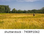 a young man walking on a...   Shutterstock . vector #740891062