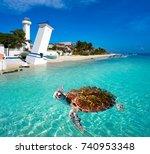 puerto morelos turtle... | Shutterstock . vector #740953348