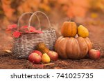 still life of harvest fruit and ... | Shutterstock . vector #741025735