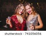 indoor portrait of pleased... | Shutterstock . vector #741056056