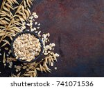 oat flakes and spikelets on... | Shutterstock . vector #741071536