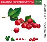 red currant on white background.... | Shutterstock .eps vector #741110692