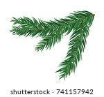 green lush spruce or pine... | Shutterstock .eps vector #741157942