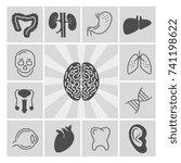 human organs medical thin line... | Shutterstock .eps vector #741198622