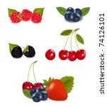 group of berries and cherries. | Shutterstock . vector #74126101