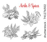 herbs and spices bunches sketch ... | Shutterstock .eps vector #741276502