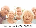 group of elderly people outdoors | Shutterstock . vector #741308326