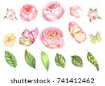 collection of botanical elements | Shutterstock . vector #741412462