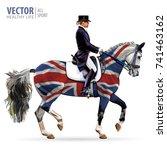 equestrian sport. horsewoman... | Shutterstock .eps vector #741463162