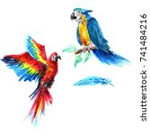 bright parrots in the style of ... | Shutterstock . vector #741484216