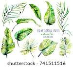 watercolor palm tropical green... | Shutterstock . vector #741511516