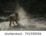 Small photo of Men Enjoy playing water in the forest