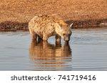 it is so hot in the summer... | Shutterstock . vector #741719416