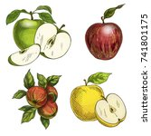 apples with leaves and halves... | Shutterstock .eps vector #741801175