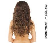 female long wavy brunette hair  ... | Shutterstock . vector #741838552
