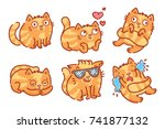 Cute Ginger Cat Character  In...