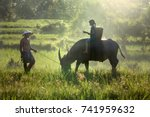 Small photo of Daughter and dad this is lifestyle of family farmer in this pic. Traditional life of famer in countryside Thailand. Education of child on the back buffalo in rice field.
