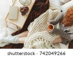 young lady drinking lemon tea... | Shutterstock . vector #742049266