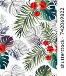 seamless hand drawn exotic... | Shutterstock .eps vector #742069822