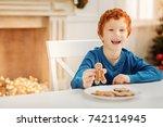 beaming ginger boy enjoying...   Shutterstock . vector #742114945