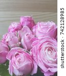 Small photo of bombastic roses. pink bombastic rose on wooden background.