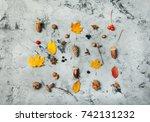 autumn composition pattern made ... | Shutterstock . vector #742131232