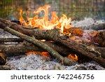 a close up of a campfire | Shutterstock . vector #742246756