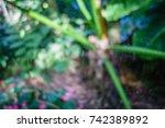 closeup of orb spider in web | Shutterstock . vector #742389892