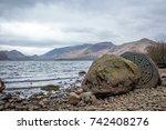 Derwent Water Calfclose Bay In...