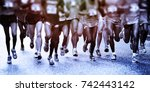 marathon runners | Shutterstock . vector #742443142