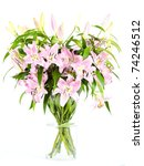 Pink Lily Flowers On White...
