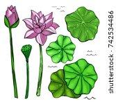 vector colored sketch set of...   Shutterstock .eps vector #742534486