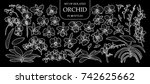 set of isolated orchid in 40... | Shutterstock .eps vector #742625662