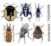 set of insects bugs beetles and ... | Shutterstock .eps vector #742645498