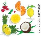 fruit orange lemon coconut... | Shutterstock .eps vector #742703905