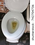 Small photo of Lavatory with pee. Dirty urinating in toilet.
