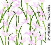 buautifol flowers on white... | Shutterstock . vector #742773088