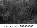 autumn landscapes of the autumn ...   Shutterstock . vector #742886845