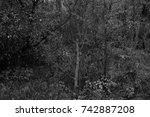 autumn landscapes of the autumn ...   Shutterstock . vector #742887208