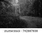 autumn landscapes of the autumn ...   Shutterstock . vector #742887838