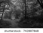 autumn landscapes of the autumn ...   Shutterstock . vector #742887868