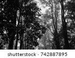 autumn landscapes of the autumn ...   Shutterstock . vector #742887895
