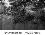 autumn landscapes of the autumn ...   Shutterstock . vector #742887898