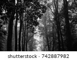 autumn landscapes of the autumn ...   Shutterstock . vector #742887982