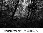 autumn landscapes of the autumn ...   Shutterstock . vector #742888072