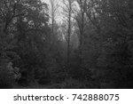 autumn landscapes of the autumn ...   Shutterstock . vector #742888075